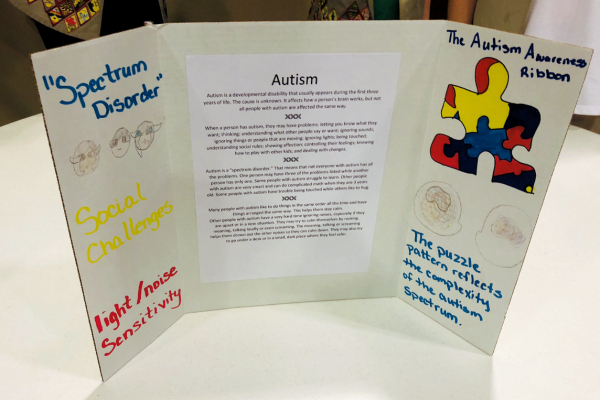 Autism board display